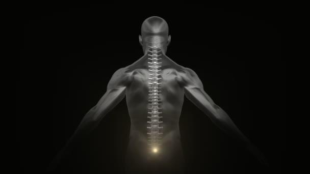 3D enlightened Kundalini yoga meditation