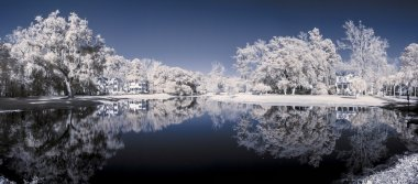 infrared 180 degree panorama