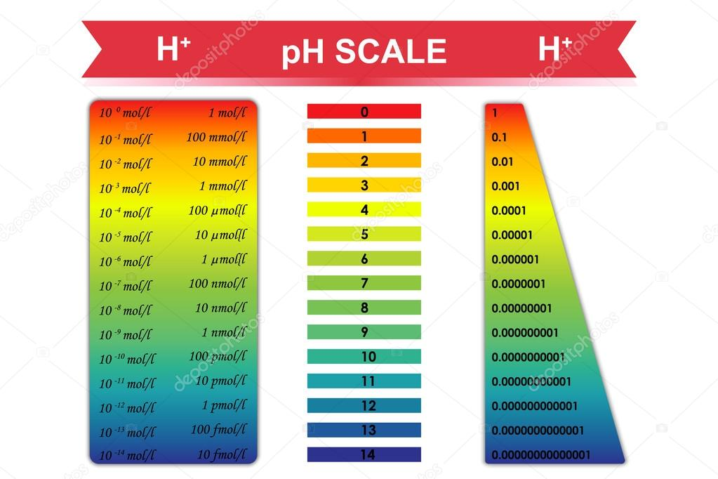 explain what ph scale measure