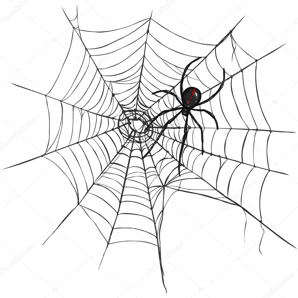 Black Widow Spider Stock Vector C Nikiteev 52611787