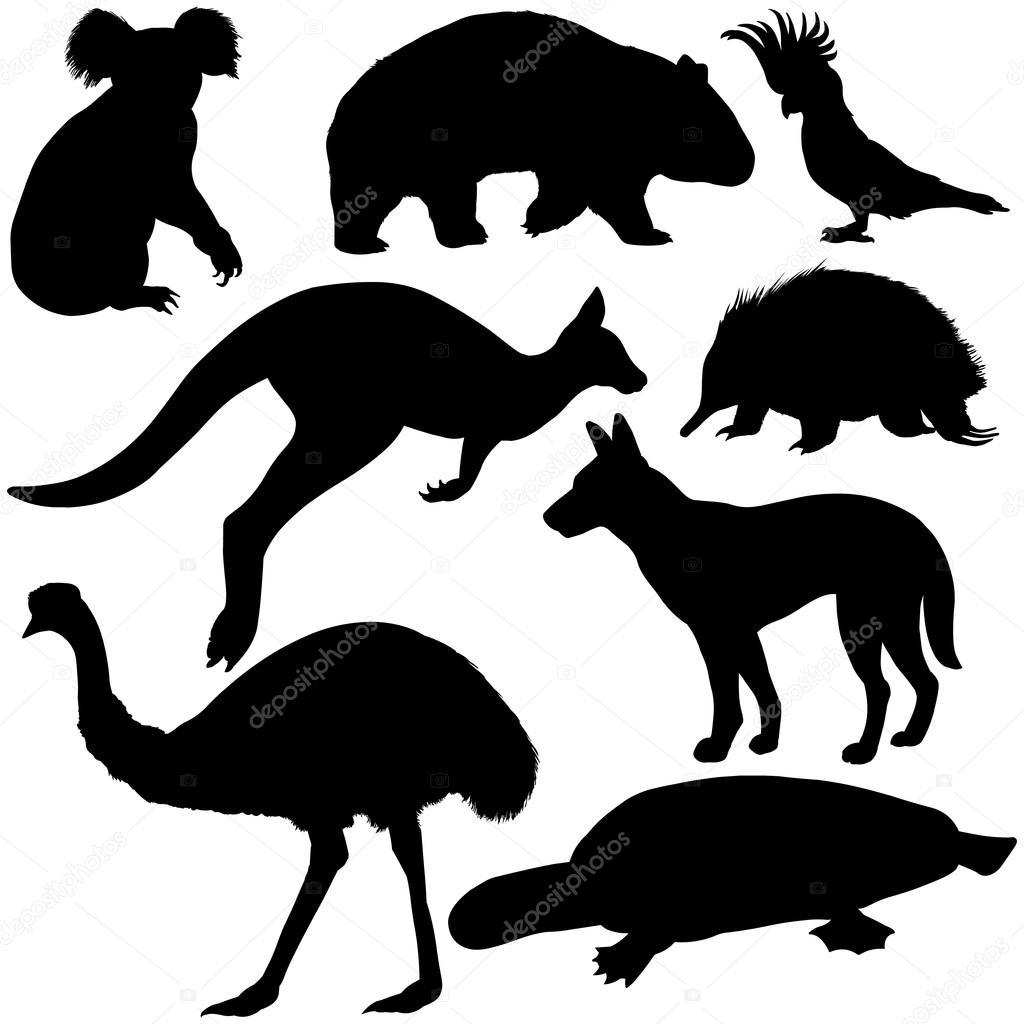オーストラリアの動物シルエットのセット — ストックベクター © nikiteev
