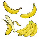 Photo Cartoon Yellow Bananas