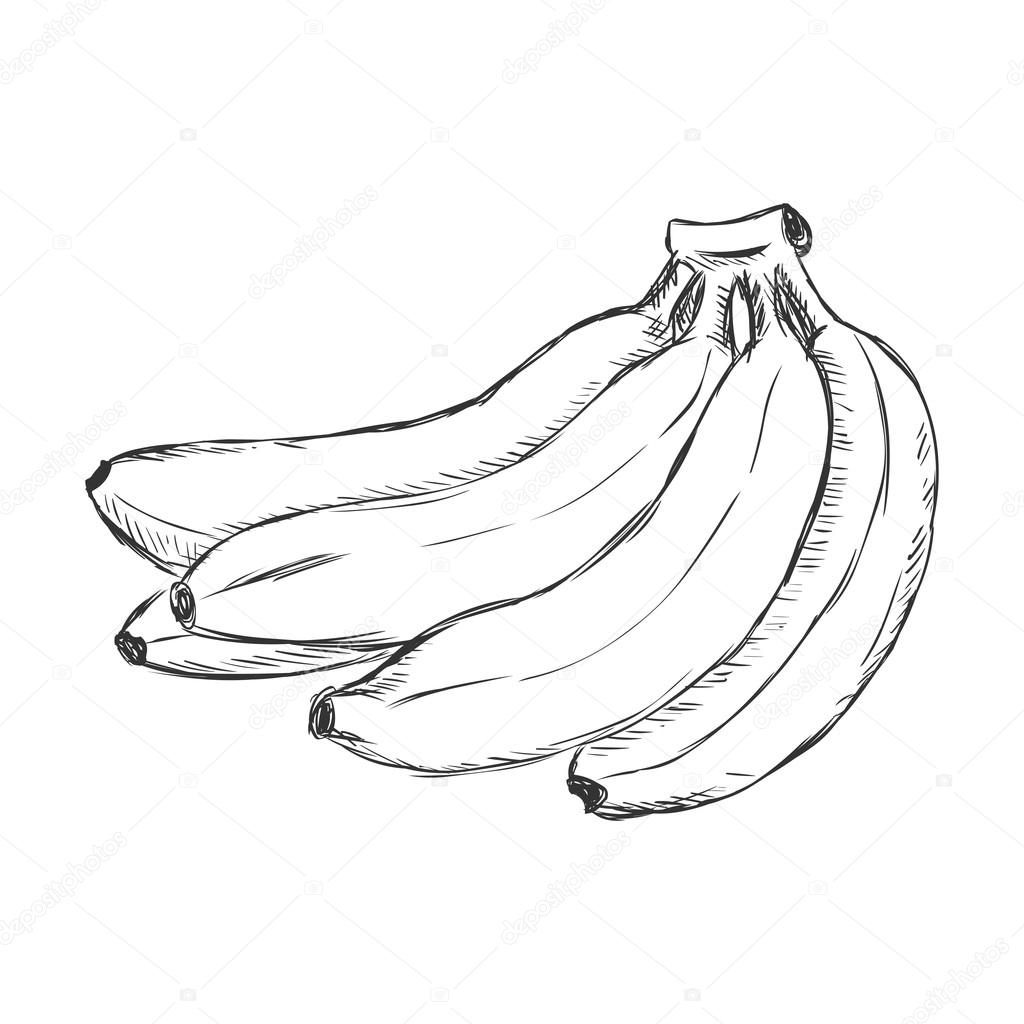 Cartoon Bunch Of Bananas Stock Vector