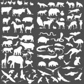 Sada siluety zvířat