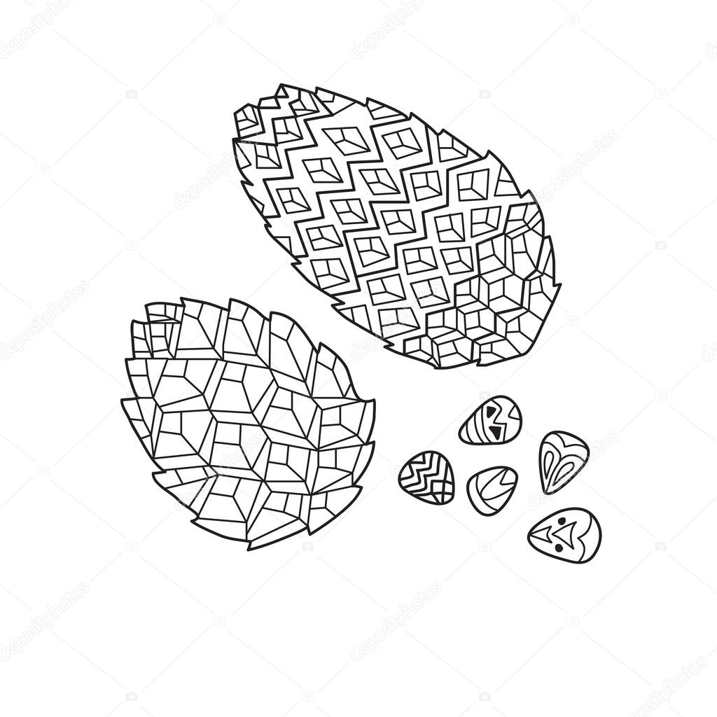 Zentangle the Baikal pinecones for adult anti stress Coloring Pa