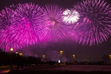 Fireworks at Sparrow hills. Russia, Moscow, Lomonosov Moscow state University.