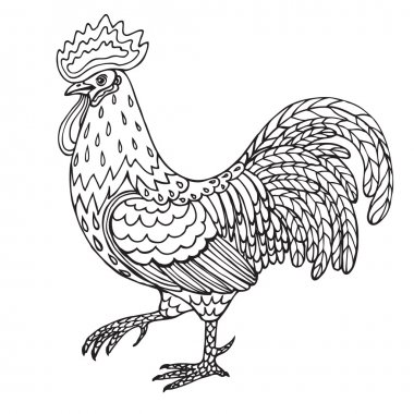 Hand drawn contoured rooster