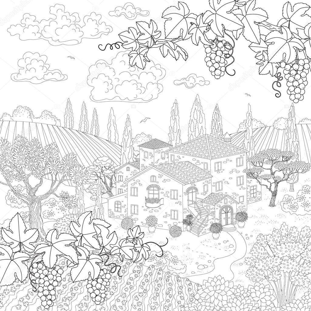 Imágenes Arboles De Uvas Para Colorear Dibujos Animados