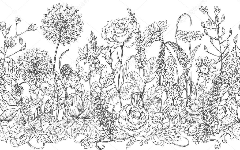 Patrón de línea inconsútil con flores silvestres — Vector de stock ...