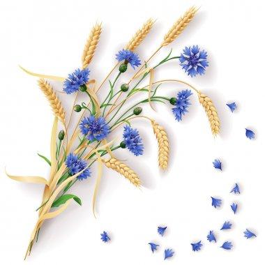 Cornflowers and wheat ears bunch
