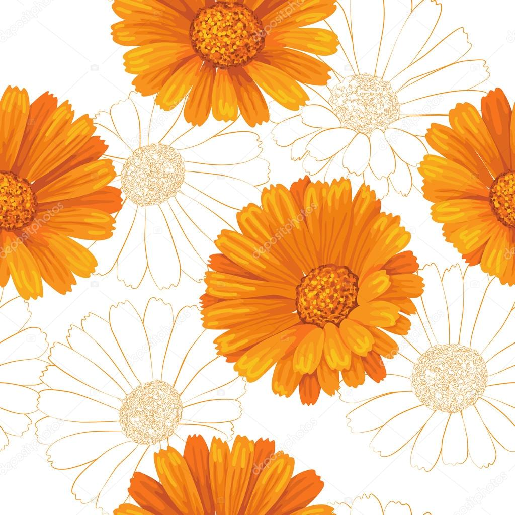 Calendula flowers pattern