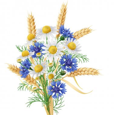 Wild Chamomile,  Cornflowers  and Wheat Ears Bunch.