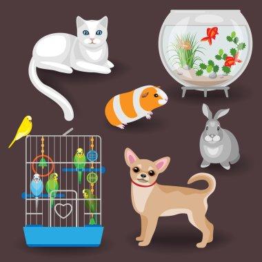 Animal companions.
