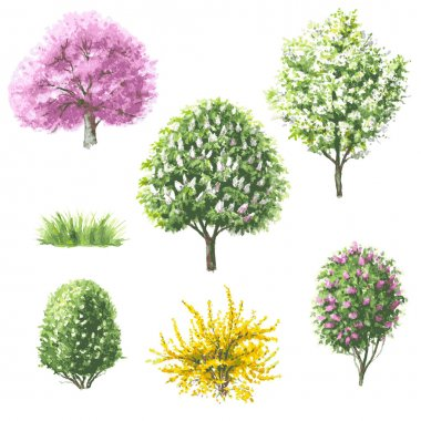 Set of blooming  trees and bushes.