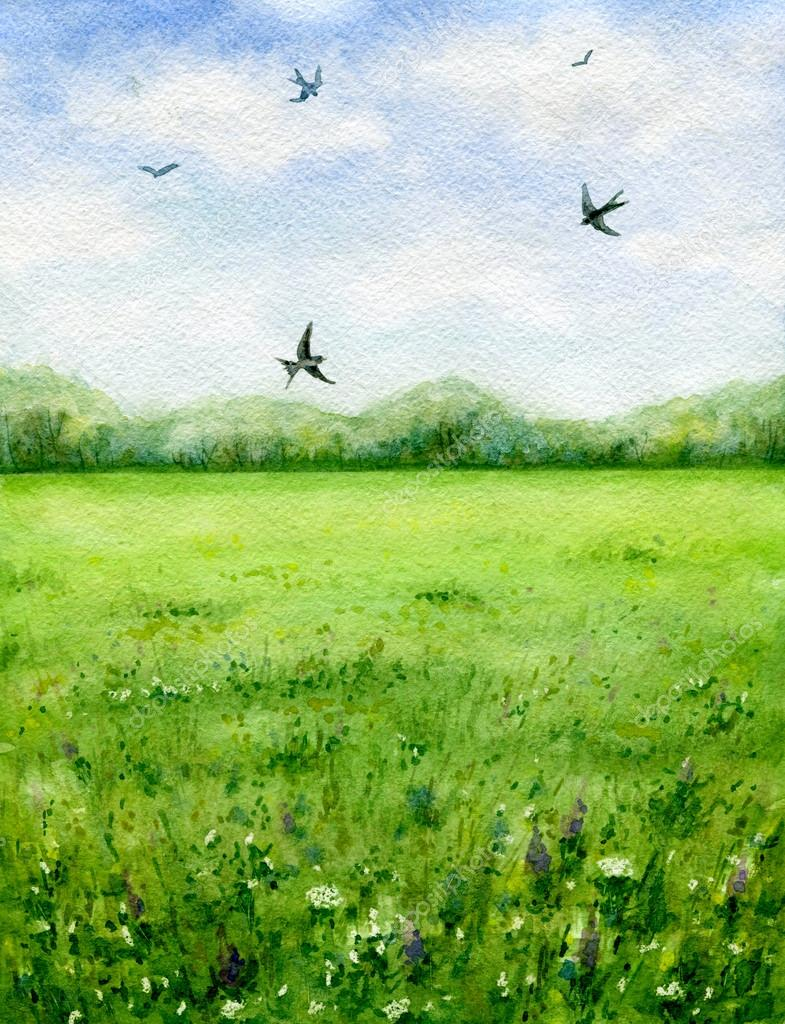 Summer view of the green meadow and flying birds.