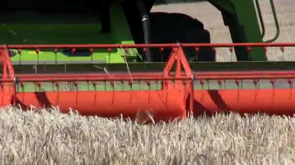 Shropshire, England - July 27th 2012: A combine harvester harvesting wheat in a field.