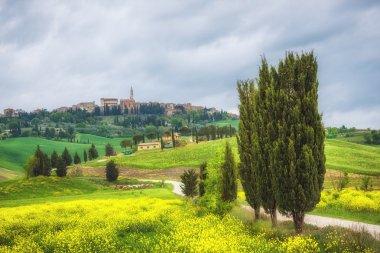 Eternally beautiful and every season Pienza in Tuscany. stock vector