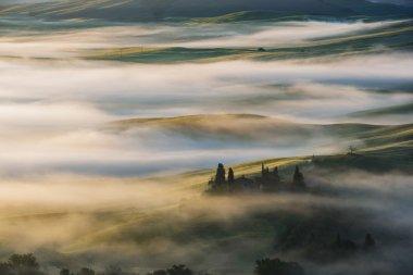 Fantastic landscape in the mists of light painted. Spring landsc