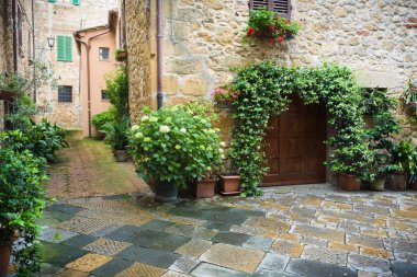 Flowery streets on a rainy spring day in a small magical village Pienza, Tuscany. stock vector