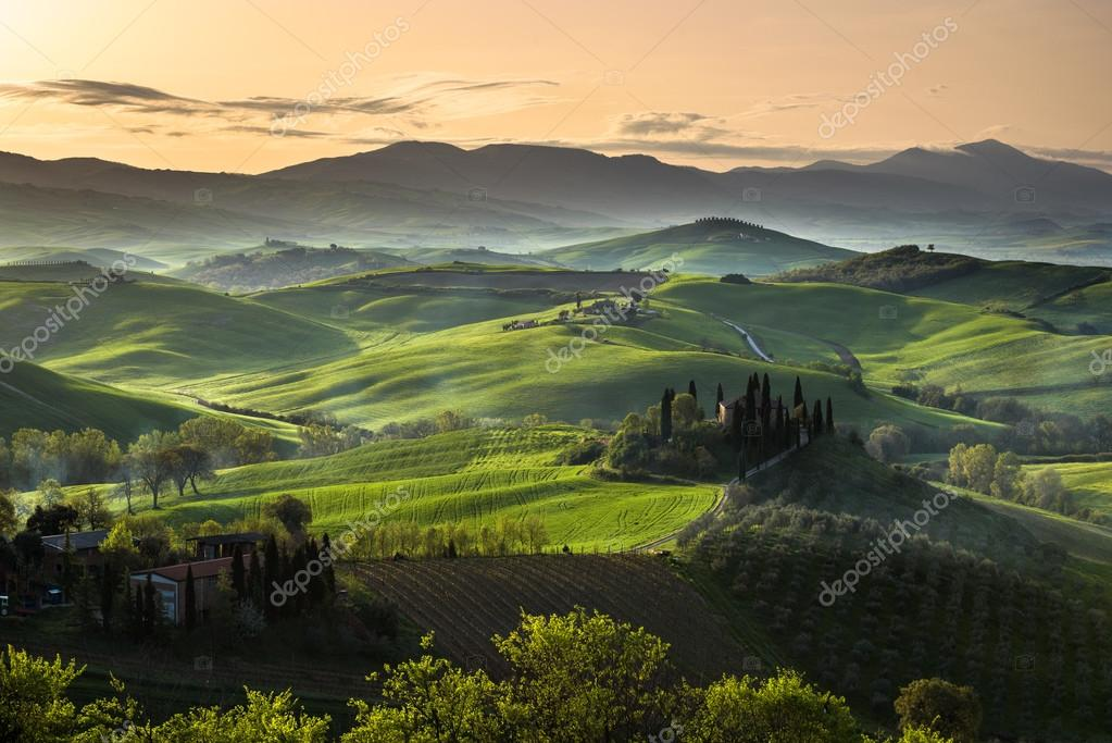 Green land during the spring season.