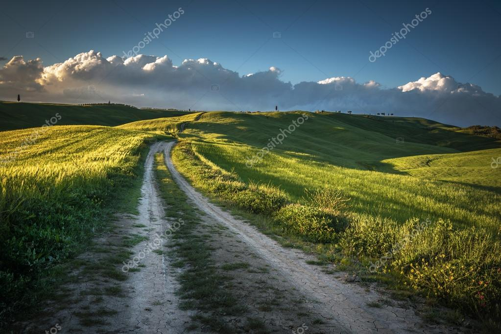 Rural winding road with trees and spring in the background.