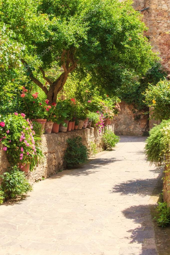 The entrance to the house in flowers and vegetation in Pienza, T