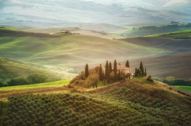 The beautiful Tuscan countryside around San Quirico d'Orcia, Italy stock vector