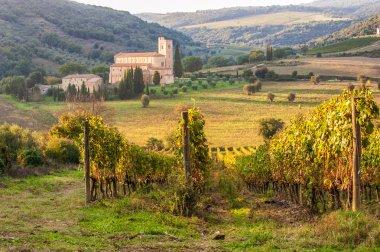 Monastery Sant'Antimo in the vineyards of Brunello, near Montalcino, Italy stock vector