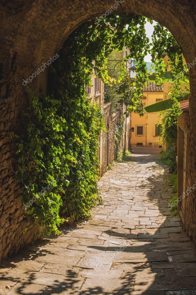 Старые улицы растительности средневековый тосканский город — Стоковое фото