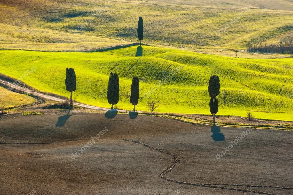 Gyönyörű és csodálatos színek a zöld tavaszi táj Tus — Stock Fotó ... a555d8ca5e