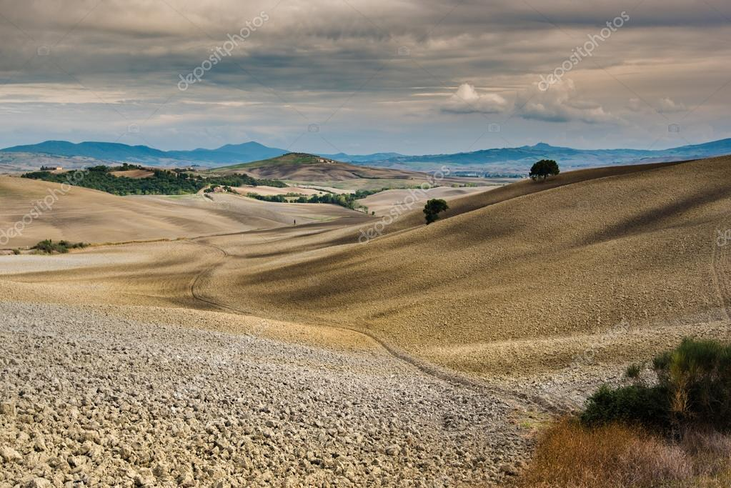 Autumn cultivated fields in Tuscany