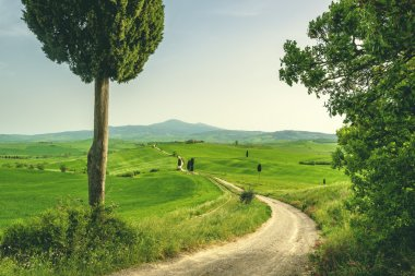 Tuscan place in a rural landscape