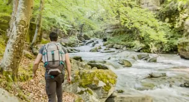 Hiker Exploring Forest River