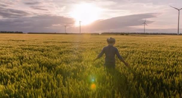 Farmář na pšeničné pole