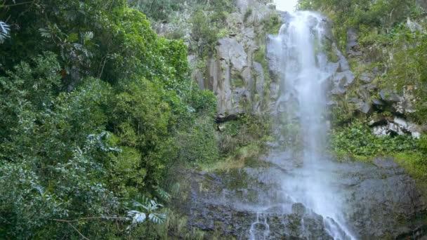 Maui-Wasserfall im Regenwald