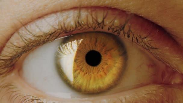 Macro Of Colourful Human Eye Moving Toward Pupil Tear Drops Dream 8k