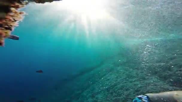 Man Underwater  Hand Water Silhouette Person Sport Fitness Summer Man Boy Nature School Fish Sun Animal Underwater Sea Coral Blue Swimming Tropical Travel Reef Snorkeling Snorkel Gopro HD