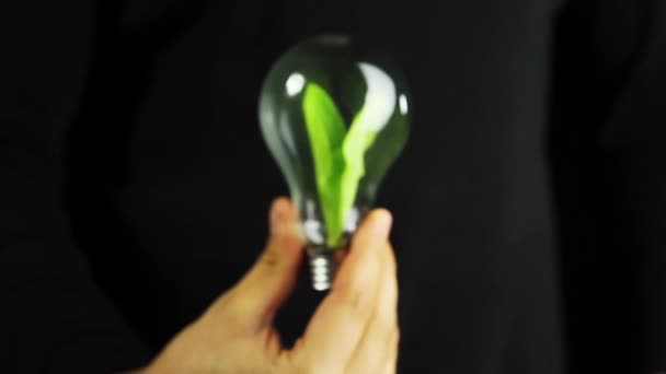 Ruka držící zelených rostlin uvnitř žárovka ekologie