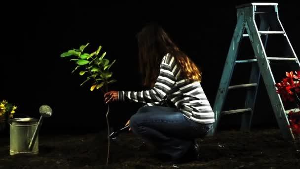 Lány a háztáji kertben fa ültetése