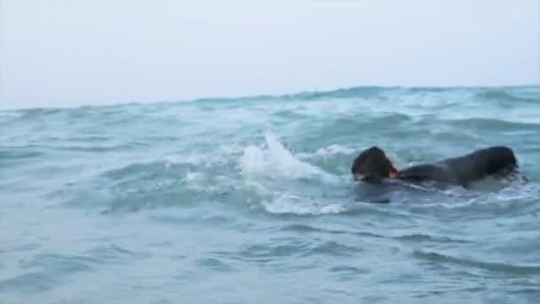 Resultado de imagem para homem nadando no mar