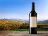 Fotografia Bottiglia di vino nei vigneti