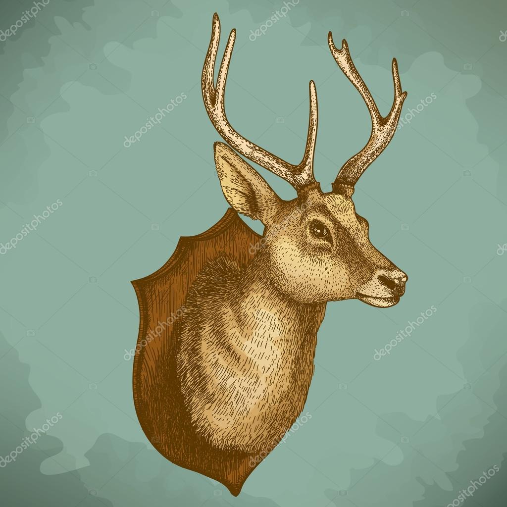 Engraving illustration of reindeer head in retro style
