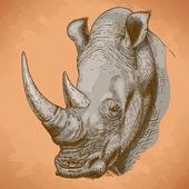 Gravírování starožitný obrázek nosorožce