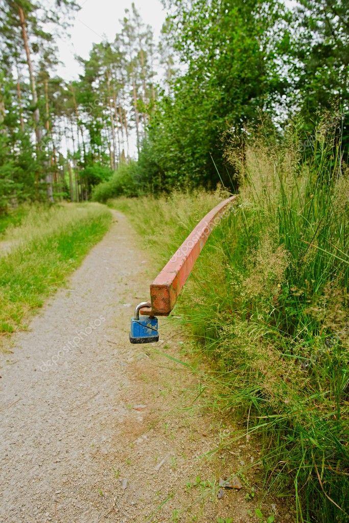 Blue broken lock on barrier cross a forest path