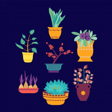 vector set of cute house plants in pots