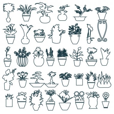 cute house plants in pots hand-drawing