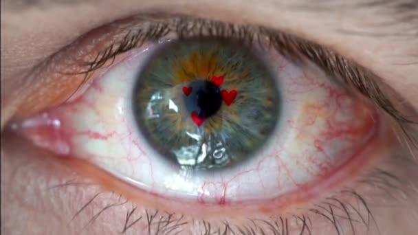 Macro video of human eye with dollar sign