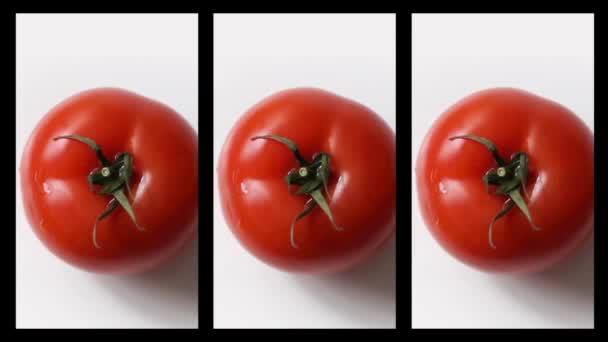 Koláž z čerstvých rajčat rotace na bílém pozadí