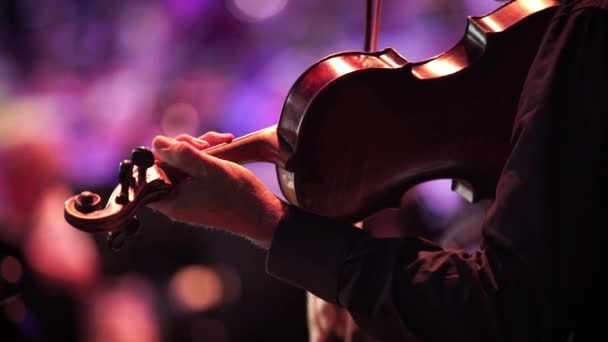 Koncert, a zenész kezében, hegedülni, fordított zár megjelöl szemcsésedik