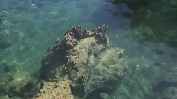 abstrakter Wasserhintergrund. Schleifenfertige Animation.